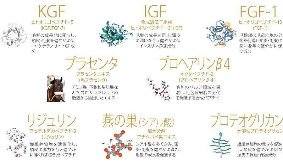 チャップアップ 8種類の成長因子(グロースファクター)配合の魅力