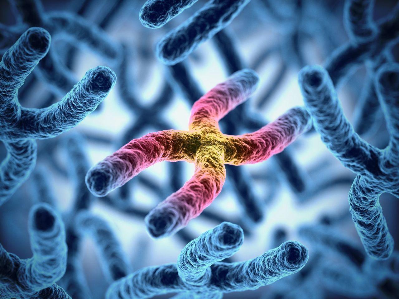 プロペシア 遺伝性の若ハゲに効果的