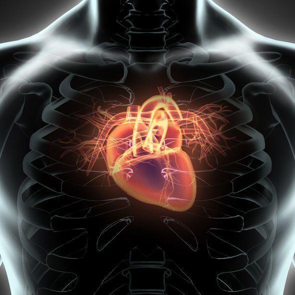 プロペシア 心臓の動悸