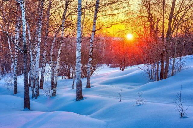 ストレス <冬> 乾燥や血行の悪化が原因