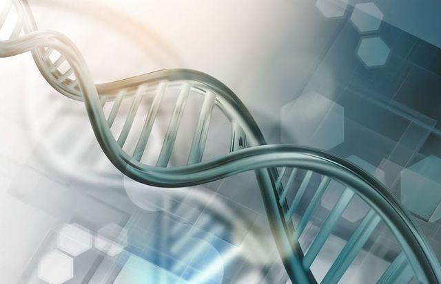 O字ハゲ(頭頂部ハゲ/つむじハゲ) つむじハゲの原因は遺伝と生活習慣