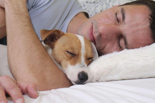 生活習慣 4. 規則正しい生活をする(出来れば22時からのゴールデンタイムには寝る)