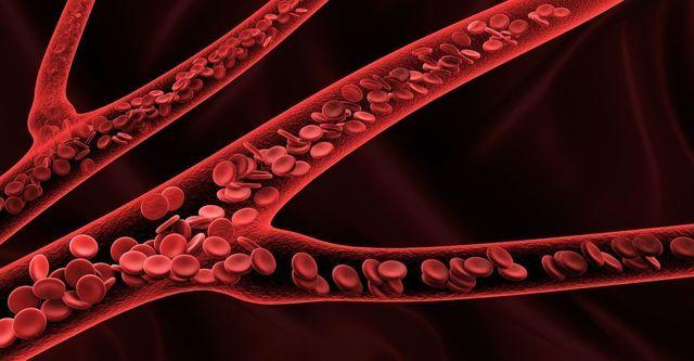 血流を促進する