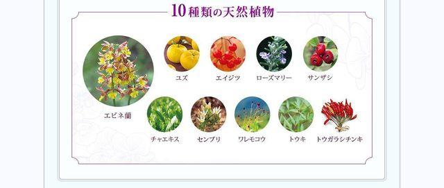 花蘭咲(カランサ) 10種類の天然植物エキス