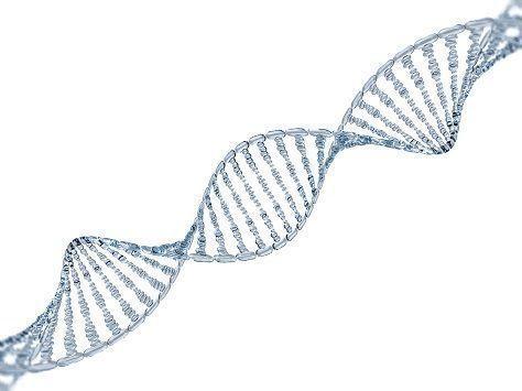 FAGA(女性男性型脱毛症) 遺伝