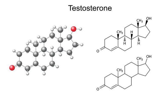 テストステロン テストステロンの特徴