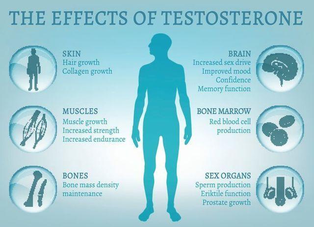 テストステロン テストステロンの効果を解説!