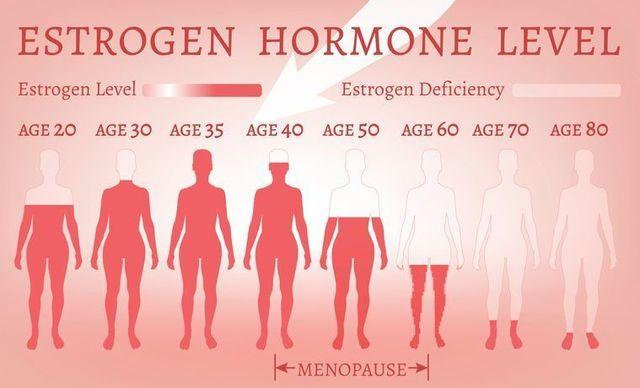 テストステロン 女性がハゲにくいのは女性ホルモンのおかげ