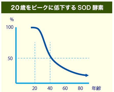 育毛剤 SOD酵素